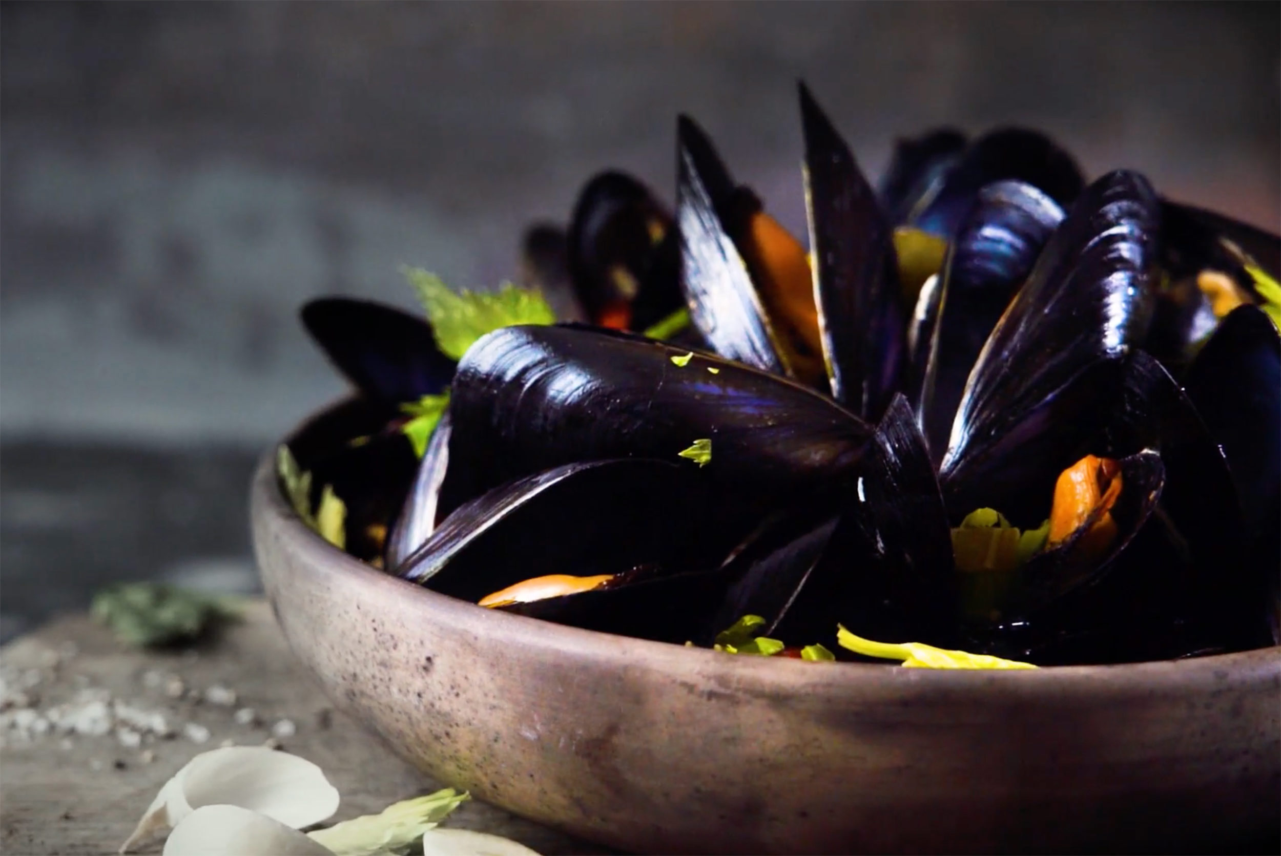 MUSSELS_video