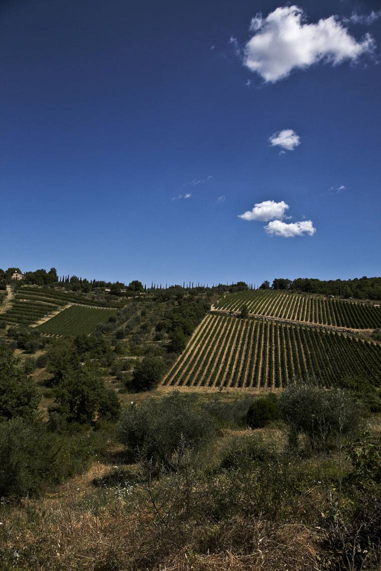 Tuscany landscape Chianti Classico with clouds
